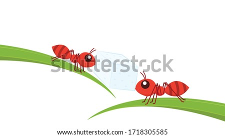 ant carrying sugar ant vector