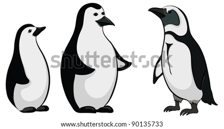 Antarctic black and white emperor penguins on white background. Vector