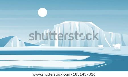 antarctic landscape vector