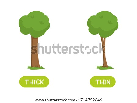 Antonyms concept, THICK and THIN. Educational flash card with trees of different thicknesses template. Word card for english language learning with opposites. Flat vector illustration with typography Foto d'archivio ©