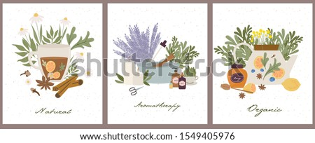 Apothecary of natural wellness poster set, organic, aromatherapy, essential oils, incense, herbal tea, candles, wildflowers and herbs.   Health and self-care concept. Vector Illustration.