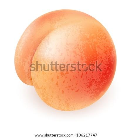 Appetizing ripe peach. Illustration for design on white background