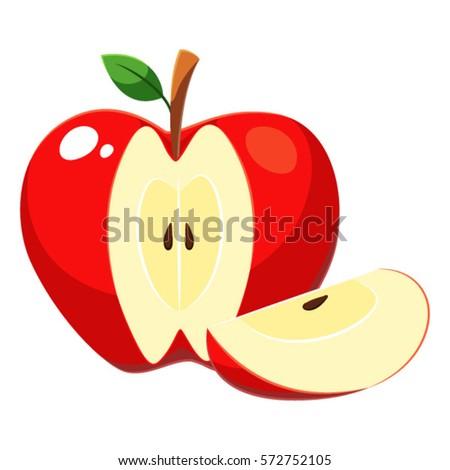 apple fruit sliced vector