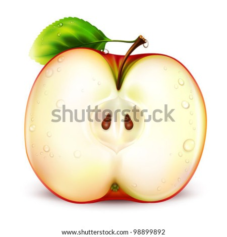 apple on white background - vector