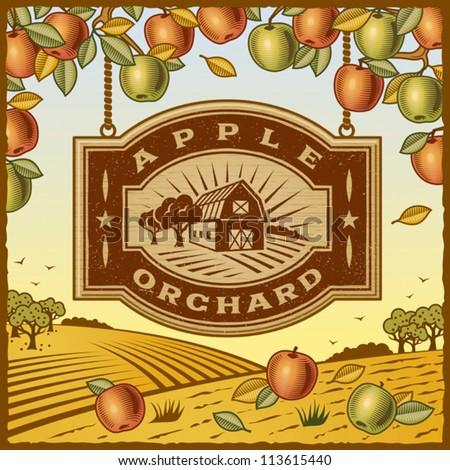 apple orchard. editable vector...