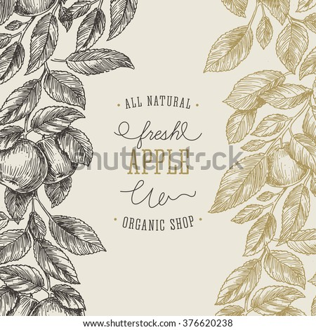 Apple tree design template. Apple leaf engraved illustration. Vector illustration