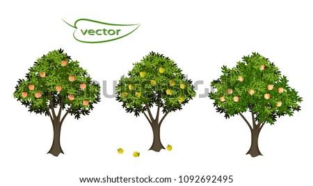 apple tree  peach tree  3d