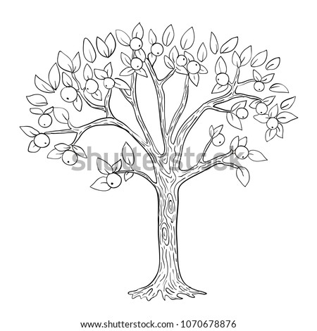 apple tree vector  black and