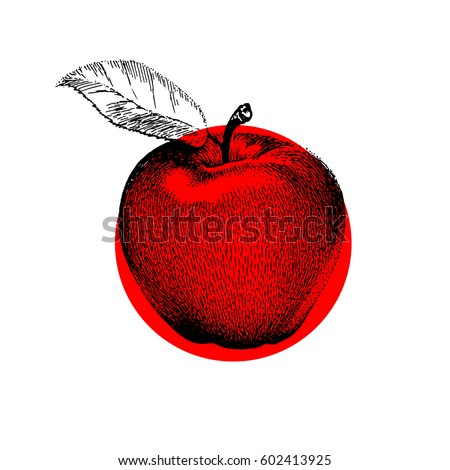 apple vector design black