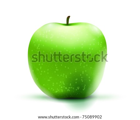 apple, vector illustration