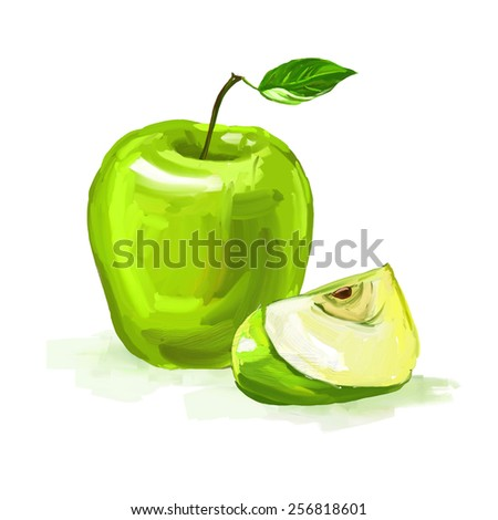 fruit and vegetable  vector illustration  painted watercolor