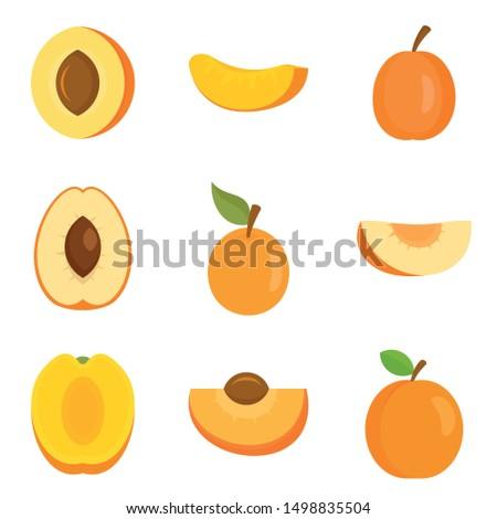 apricot icons set flat set of