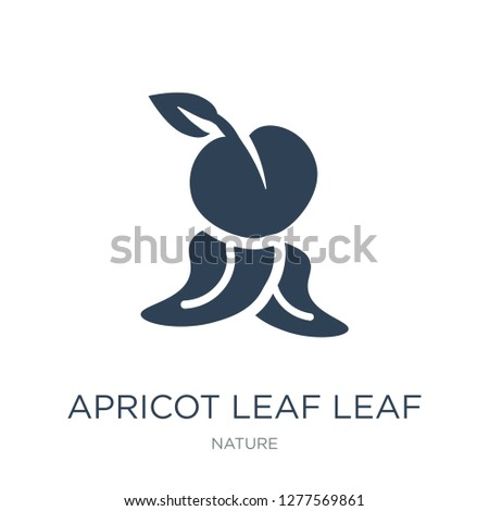 apricot leaf leaf icon vector on white background, apricot leaf leaf trendy filled icons from Nature collection, apricot leaf leaf vector illustration
