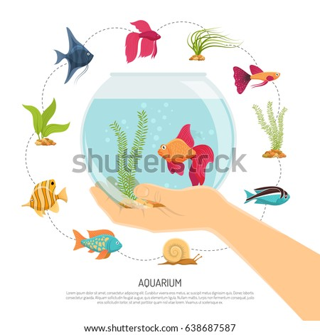 aquarium background with flat