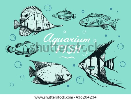 Free Vector Fish Sketches Download Free Vector Art Stock Graphics
