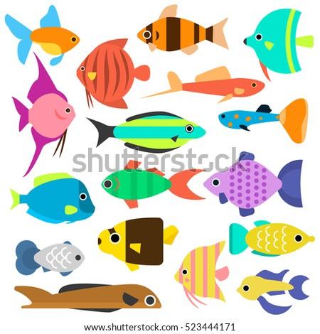 aquarium flat style fishes