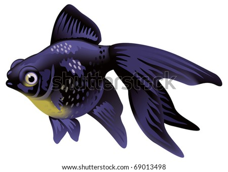 shaded fish