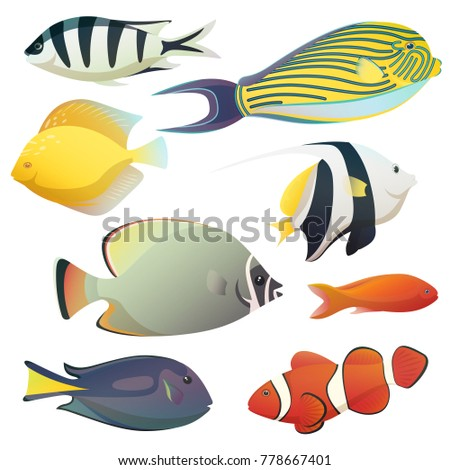 aquarium or aquaria colorful