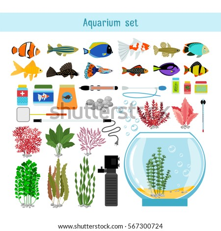 Shutterstock Aquarium underwater vector elements, corals and stones isolated on white background. Thermometer, lamp and accessory for aquarium illustration