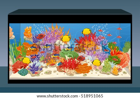 aquarium with fish and corals
