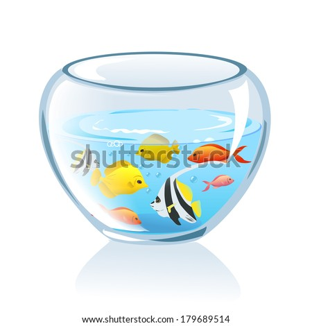 aquarium with fish isolated