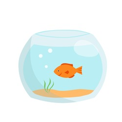 Aquarium with gold fish isolated on a white background. Vector illustration in cartoon style. Perfect for children's design or for decorating a pet store