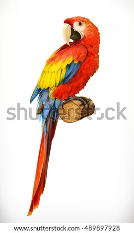 Shutterstock Ara parrot. Macaw. Photo realistic, 3d vector icon