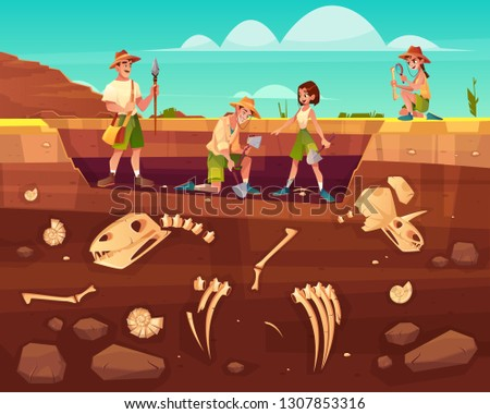 Archaeologists, paleontology scientists working on excavations or digging soil layers with shovel and exploring founded artifacts. studying dinosaurs fossil skeletons bones cartoon vector illustration