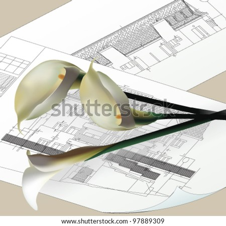 Architectural background with Calla Flowers. Vector Clip-art