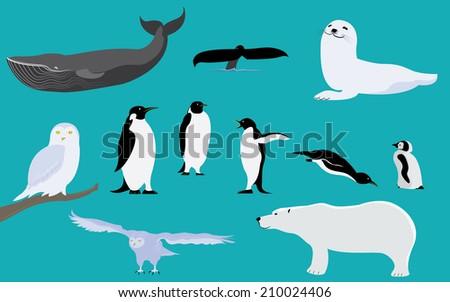 arctic and antarctica animals