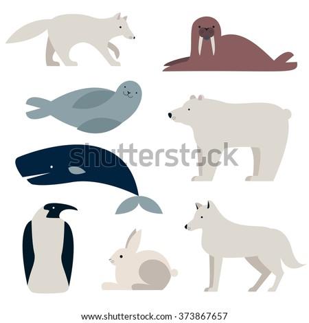 arctic and polar animals vector