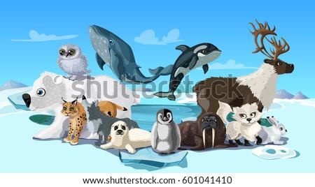 arctic animals cartoon template