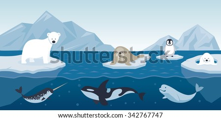 arctic animals character and