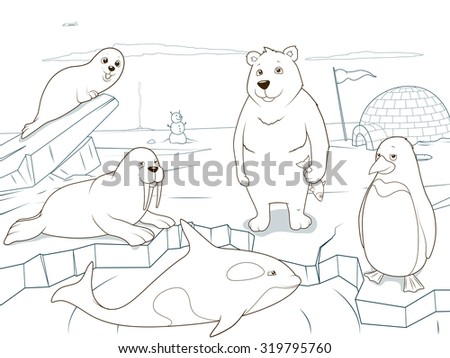 arctic animals coloring book