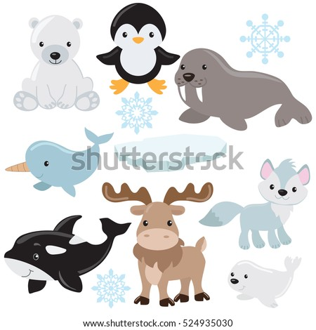 arctic animals vector cartoon
