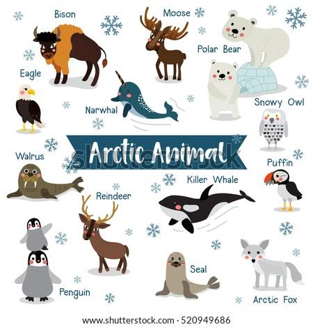 arctic creature cartoon on