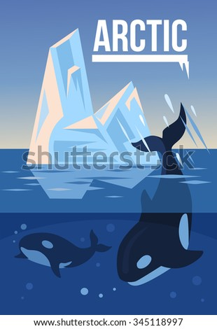 arctic nature vector flat