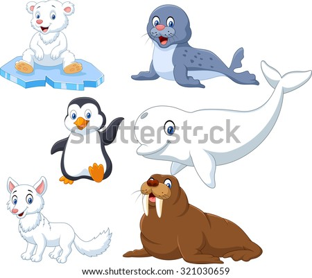 arctics animals collection set