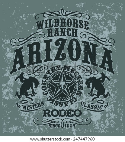 arizona wild horse  rodeo
