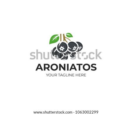 Aronia berry logo template. Chokeberry vector design, Fruit logotype