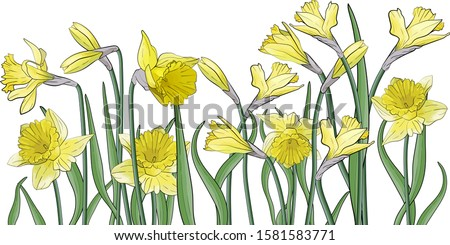 art bouquet of yellow narcissus