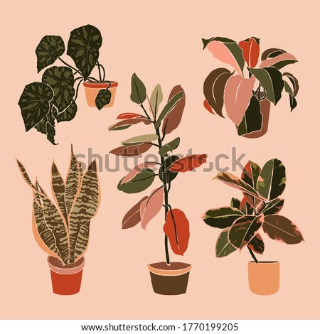 Art collage potted houseplants in a minimal trendy style. Silhouette of sansevieria, begonia and ficus plants in a contemporary simple abstract style on a pink background. Vector illustration freehand