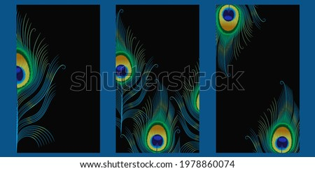 art covers with peacock feather