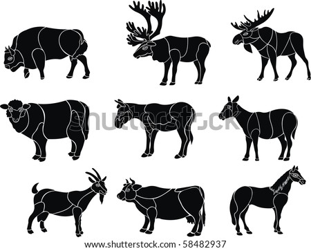 artiodactyls animal vector set
