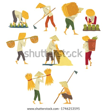 Asian Farmers in Straw Conical Hats Working on Field, Peasants Characters Planting and Harvesting Rice Cartoon Style Vector Illustration