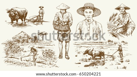 asian farmers working on field