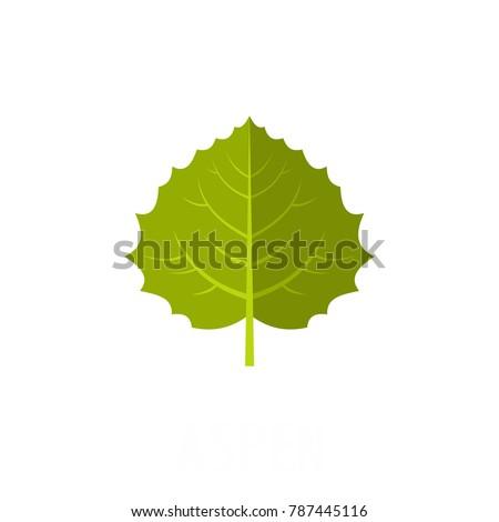 aspen leaf icon flat