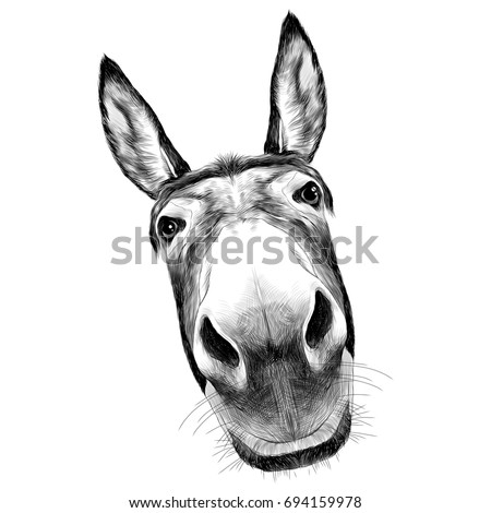 ass front view with a large head, looks black and white illustration monochrome ストックフォト ©
