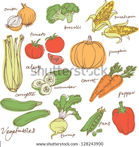 Assorted vegetable vector illustration