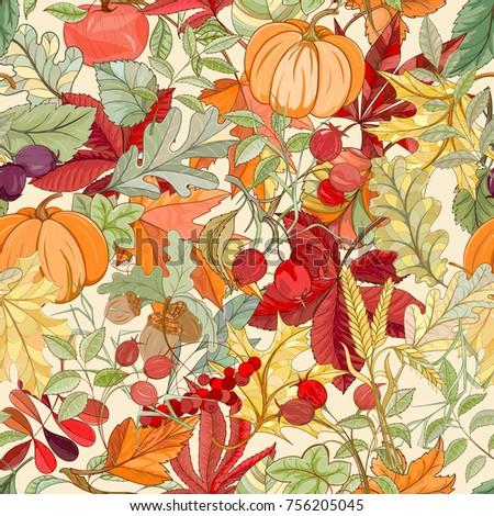 assortment autumn seamless